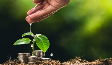 CEFIS anuncia programa de formación de Estrategia de Inversiones con Impacto